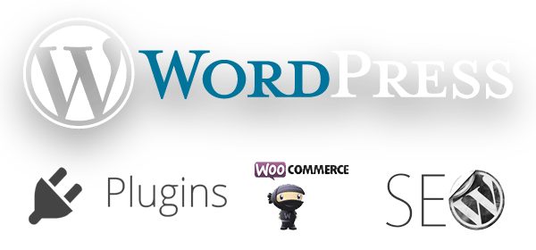 wordpress programierung seo